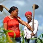 ONG CESAL y UCATEBA realizarán dos actividades, en el mes de octubre, en Barahona